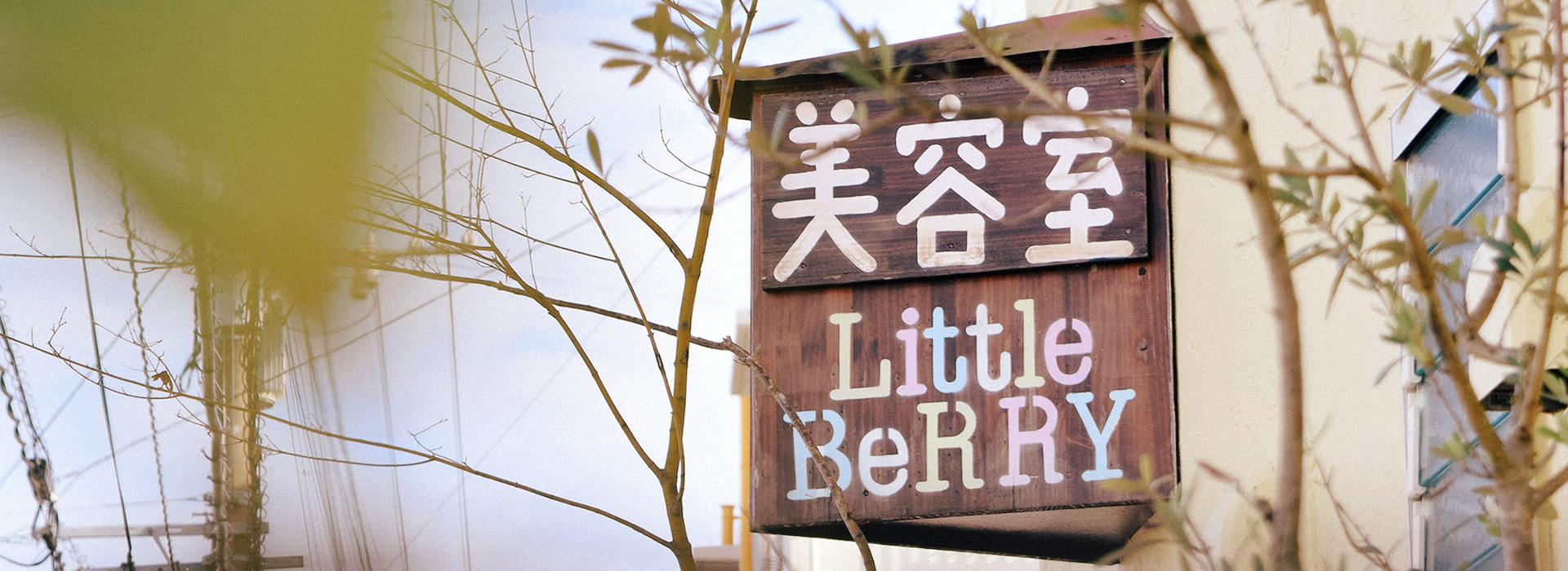 LittleBeRRY